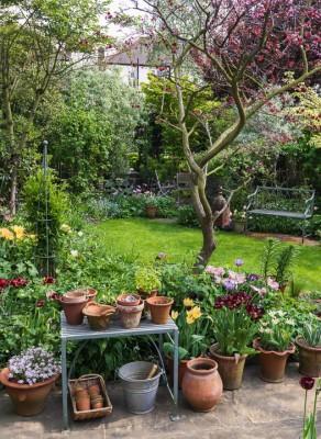 wpid14409-Photographing-Gardens-GKIL053-nicola-stocken.jpg