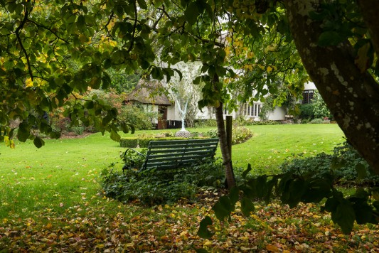 wpid14628-WoodBarton-Garden-in-November-GWOA001-nicola-stocken.jpg