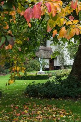 wpid14630-WoodBarton-Garden-in-November-GWOA002-nicola-stocken.jpg