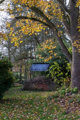 wpid14632-WoodBarton-Garden-in-November-GWOA003-nicola-stocken.jpg