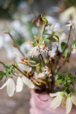 wpid14750-Picking-a-Garden-Posie-in-January-QPOS004-nicola-stocken.jpg