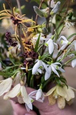 wpid14752-Picking-a-Garden-Posie-in-January-QPOS005-nicola-stocken.jpg