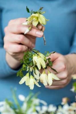 wpid14768-Picking-a-Garden-Posie-in-January-QPOS012-nicola-stocken.jpg