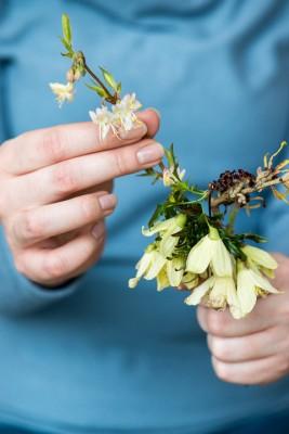 wpid14774-Picking-a-Garden-Posie-in-January-QPOS015-nicola-stocken.jpg