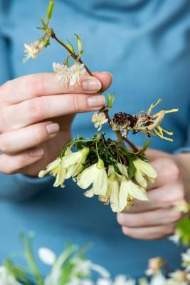 wpid14776-Picking-a-Garden-Posie-in-January-QPOS016-nicola-stocken.jpg