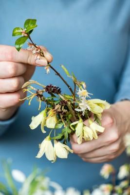 wpid14778-Picking-a-Garden-Posie-in-January-QPOS017-nicola-stocken.jpg