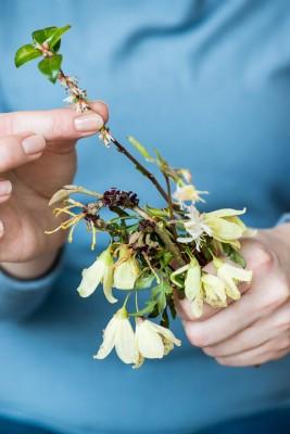wpid14780-Picking-a-Garden-Posie-in-January-QPOS018-nicola-stocken.jpg