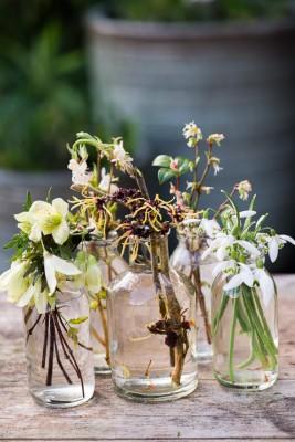 wpid14792-Picking-a-Garden-Posie-in-January-QPOS027-nicola-stocken.jpg