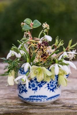 wpid14810-Picking-a-Garden-Posie-in-January-QPOS023-nicola-stocken.jpg