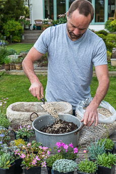 Thumbnail image for Planting an Alpine Trough in May