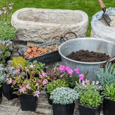 wpid15507-Planting-an-Alpine-Trough-in-May-QTRO002-nicola-stocken.jpg