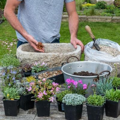 wpid15513-Planting-an-Alpine-Trough-in-May-QTRO005-nicola-stocken.jpg