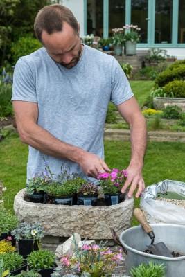 wpid15527-Planting-an-Alpine-Trough-in-May-QTRO012-nicola-stocken.jpg