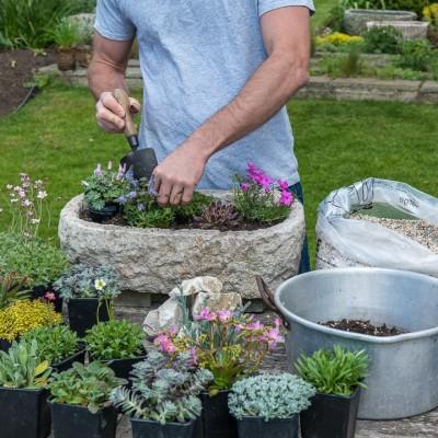 wpid15535-Planting-an-Alpine-Trough-in-May-QTRO016-nicola-stocken.jpg