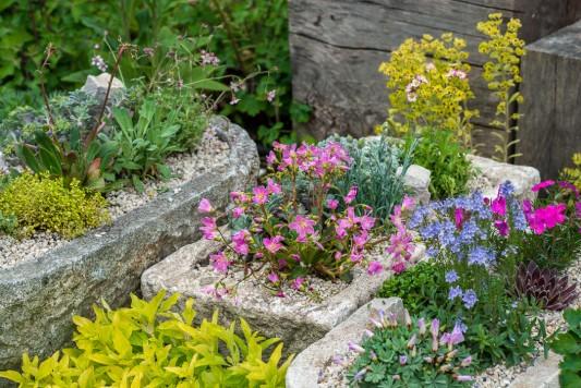 wpid15548-Planting-an-Alpine-Trough-in-May-QTRO048-nicola-stocken.jpg