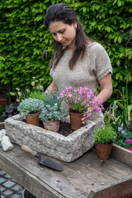 wpid15588-Trough-Step-by-Step-Planting-Alpines-QTRO032-nicola-stocken.jpg