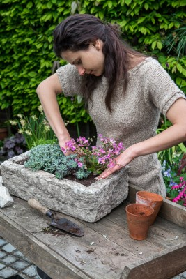 wpid15600-Trough-Step-by-Step-Planting-Alpines-QTRO038-nicola-stocken.jpg