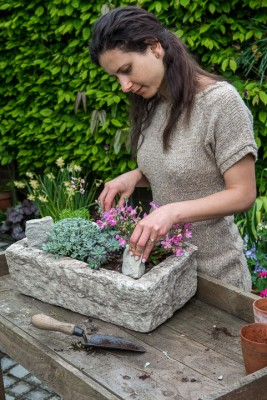 wpid15608-Trough-Step-by-Step-Planting-Alpines-QTRO042-nicola-stocken.jpg