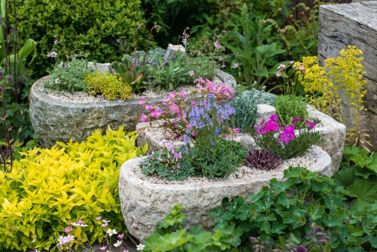 wpid15622-Trough-Step-by-Step-Planting-Alpines-QTRO055-nicola-stocken.jpg