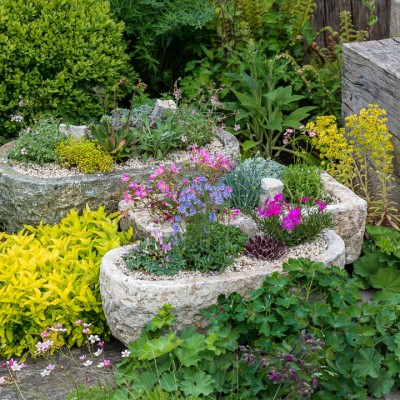 wpid15624-Trough-Step-by-Step-Planting-Alpines-QTRO057-nicola-stocken.jpg