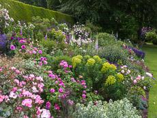 Thumbnail image for Summer at Coton Manor
