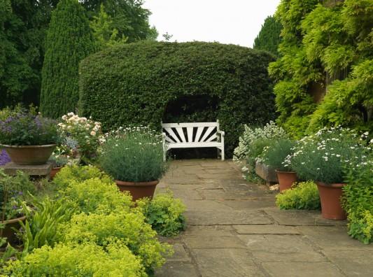 wpid16303-Summer-at-Coton-Manor-GCOT015-nicola-stocken.jpg