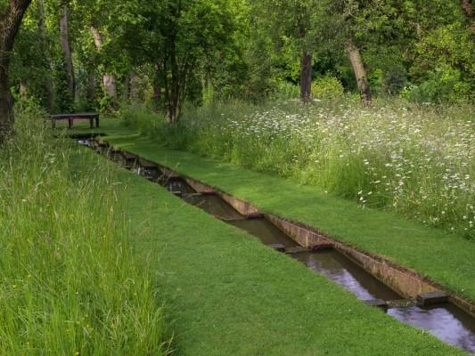 wpid16313-Summer-at-Coton-Manor-GCOT023-nicola-stocken.jpg