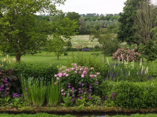 wpid16317-Summer-at-Coton-Manor-GCOT028-nicola-stocken.jpg