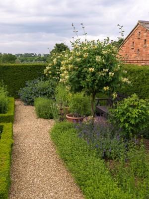 wpid16331-Summer-at-Coton-Manor-GCOT041-nicola-stocken.jpg