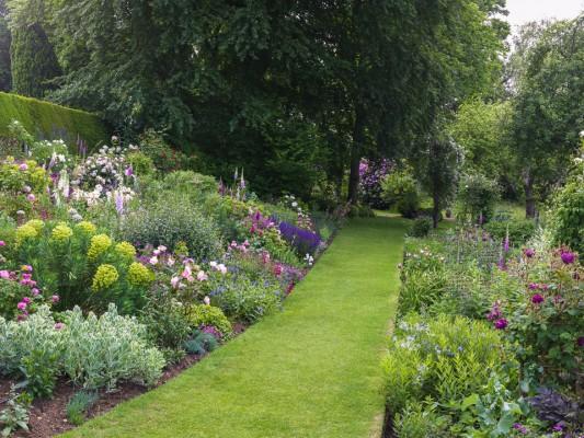 wpid16361-Summer-at-Coton-Manor-GCOT079-nicola-stocken.jpg
