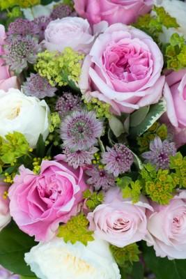 wpid16473-Combining-Roses-with-June-Perennials-GDAV143-nicola-stocken.jpg