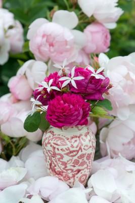 wpid16475-Combining-Roses-with-June-Perennials-GDAV145-nicola-stocken.jpg