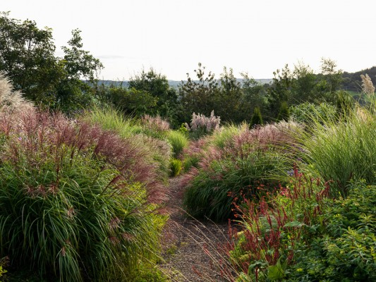 wpid16711-Burrow-Farm-In-Autumn-GBFB016-nicola-stocken.jpg