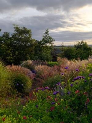 wpid16713-Burrow-Farm-In-Autumn-GBFB019-nicola-stocken.jpg