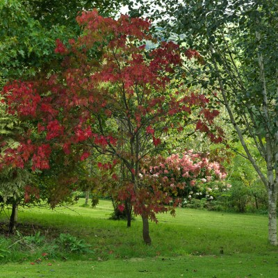 wpid16746-Burrow-Farm-In-Autumn-GBFB049-nicola-stocken.jpg