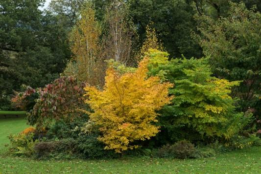 wpid16750-Burrow-Farm-In-Autumn-GBFB054-nicola-stocken.jpg
