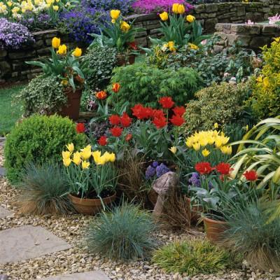wpid16969-Spring-Tulip-Spectacular-GLIT030-nicola-stocken.jpg