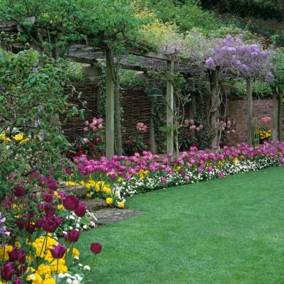 wpid16979-Spring-Tulip-Spectacular-GLIT037-nicola-stocken.jpg