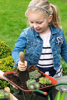 Thumbnail image for Child Planting Wheelbarrow