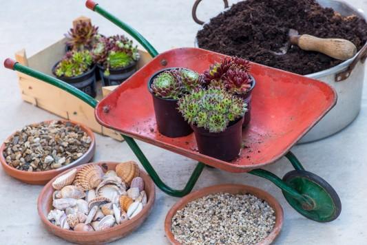 wpid17425-Child-Planting-Wheelbarrow-QCHI001-nicola-stocken.jpg