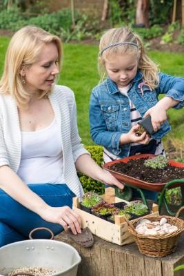 wpid17435-Child-Planting-Wheelbarrow-QCHI006-nicola-stocken.jpg