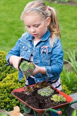 wpid17447-Child-Planting-Wheelbarrow-QCHI012-nicola-stocken.jpg