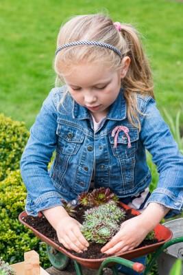 wpid17449-Child-Planting-Wheelbarrow-QCHI014-nicola-stocken.jpg