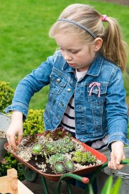 wpid17453-Child-Planting-Wheelbarrow-QCHI018-nicola-stocken.jpg