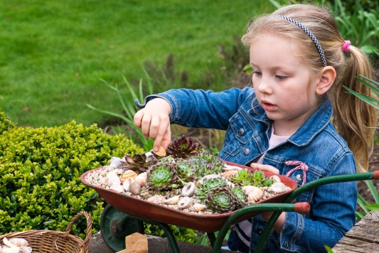 wpid17459-Child-Planting-Wheelbarrow-QCHI022-nicola-stocken.jpg