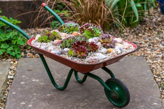 wpid17461-Child-Planting-Wheelbarrow-QCHI025-nicola-stocken.jpg