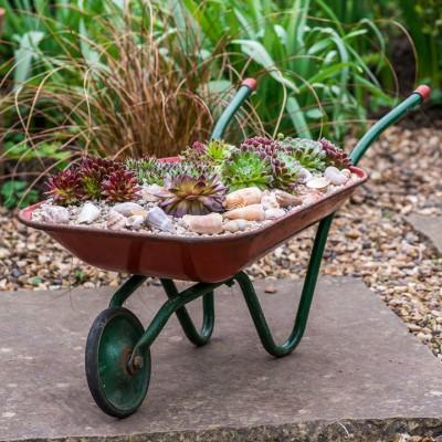 wpid17465-Child-Planting-Wheelbarrow-QCHI027-nicola-stocken.jpg