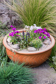 Thumbnail image for Child Planting Alpine Bowl