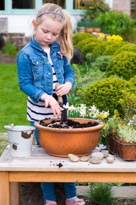 wpid17487-Child-Planting-Alpine-Bowl-QCHI062-nicola-stocken.jpg
