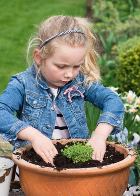 wpid17491-Child-Planting-Alpine-Bowl-QCHI064-nicola-stocken.jpg